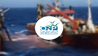 المكتب الوطني للصيد : مباراة لتوظيف مساعدة مدير (1 منصب) آخر أجل 13 نونبر 2017 Ood_ou10
