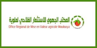 المكتب الجهوي للاستثمار الفلاحي لملوية : لائحة المدعوين لإجراء مباراة لتوظيف 15 منصب في عدة درجات  Ood_ou10