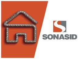 شركة صوناسيد للحديد والصلب توظيف اطر مالية  Sonasi12