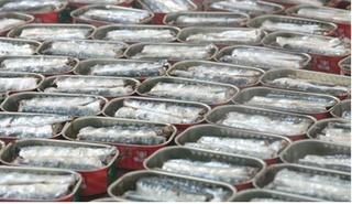 شركة لتصبير الاسماك بمدينة العيون توظيف 40 منصب بجهة تنغير - النقل و السكن مرخص من الشركة Tiscop10