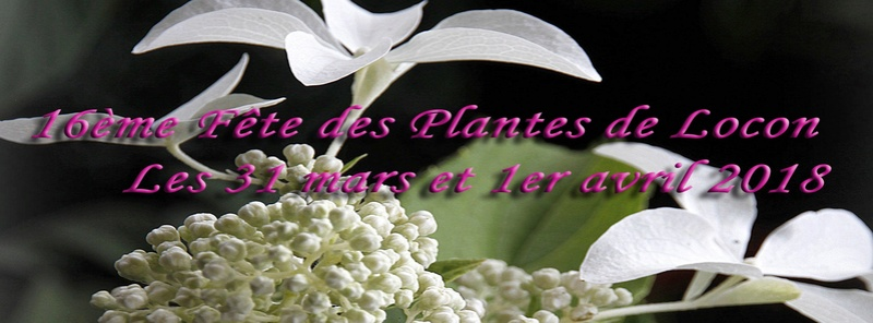 IDEES DE  VISITES DE PARCS ,  JARDINS  et FLORALIES 23783310