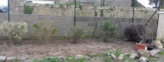 mon jardin au tregor - Page 2 20180410