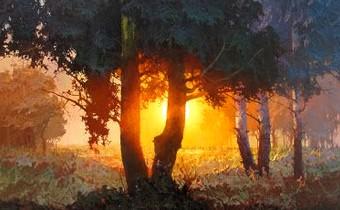 """""""Ecoute la forêt qui pousse plutôt que l'arbre qui tombe."""" 1737bc10"""