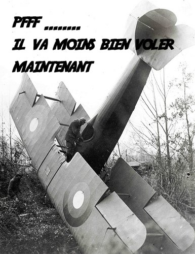 Campagne Wings of War 14/18 Missions 1/2 sauvez le biplace 25503510