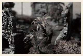 Blitzkrieg - Page 2 Temple11