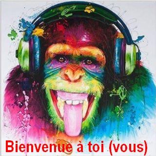 Du Poitou ! Singe112