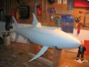Construction du Requin de Tintin Constr21