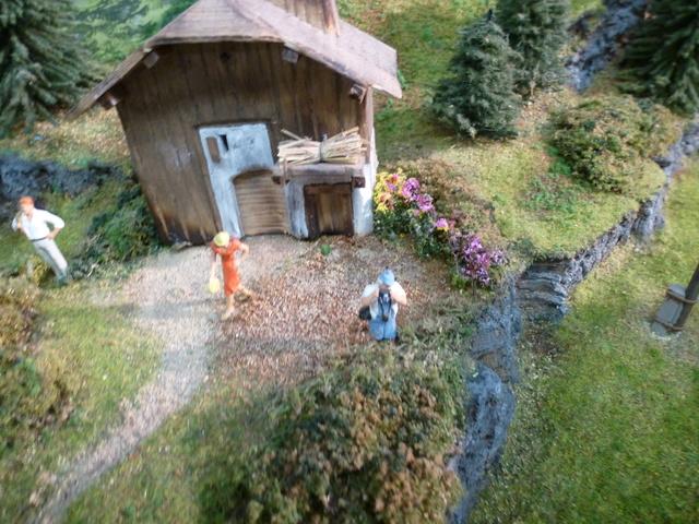 Expo Chambéry  4 et 5 Novembre 2017 P1110415