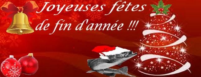 Bonnes fêtes de fin d'année!!! Joyeus11