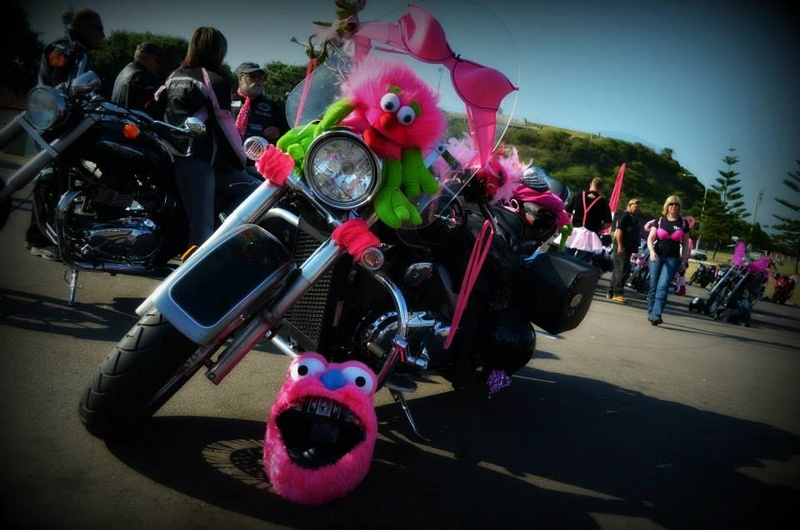 pinK ribbon ride 13764410
