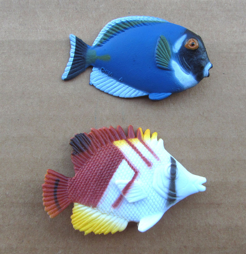 12 - Club Earth Tropical Fish Set / Seeking photos for 2 Fishes12