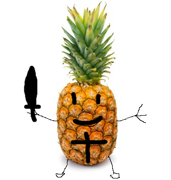 Duo Gagnant  Ananas10