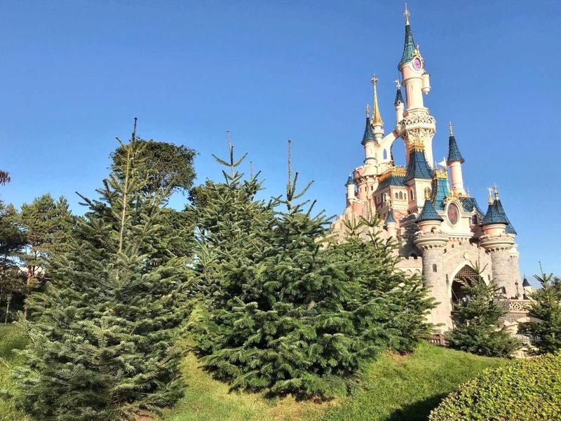 [Saison] le Noël Enchanté Disney (du 11 novembre 2017 au 8 janvier 2018) - Page 17 Dnx_6m10