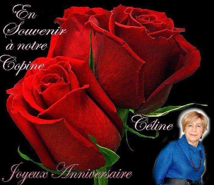 Anniversaire Céline Annive13