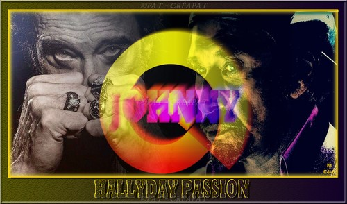 Hommage à Johnny Hallyday (1943-2017) 13kobs10