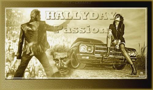 Hommage à Johnny Hallyday (1943-2017) Bzysaw10