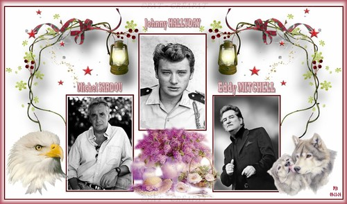 Hommage à Johnny Hallyday (1943-2017) - Page 2 Dvgwww10