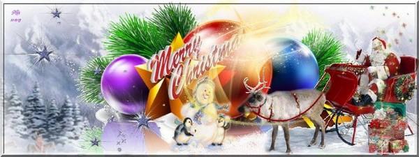 Joyeux Noël à tous ! - Page 2 Sans_t21