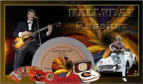 Hommage à Johnny Hallyday (1943-2017) T1jpt-10