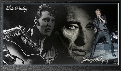 Hommage à Johnny Hallyday (1943-2017) - Page 2 Tiryll10