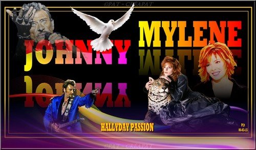 Hommage à Johnny Hallyday (1943-2017) Vdv2ay10