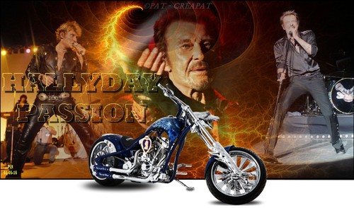 Hommage à Johnny Hallyday (1943-2017) Wf9hpt10