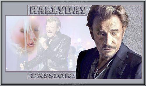 Hommage à Johnny Hallyday (1943-2017) Zutogs10