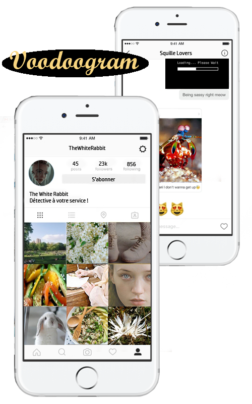 Profil de Louise Lowell Untitl12