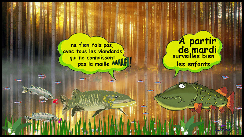 Mes interventions Facebook - Page 6 Broche13
