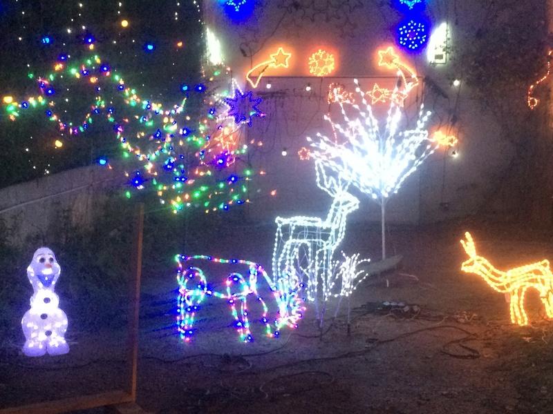 Joyeuses fêtes Img_4213