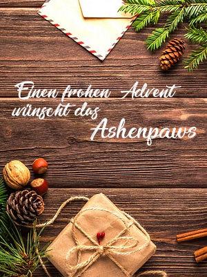 GRÜSSE <3 - Seite 10 Advent10