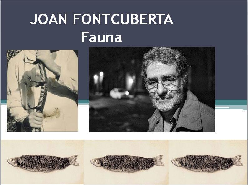JOAN FONTCUBERTA (apprécier) deuxième cycle Joan_110