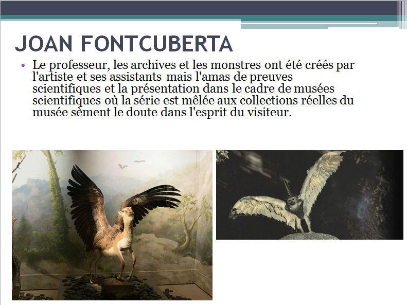 JOAN FONTCUBERTA (apprécier) deuxième cycle Joan_111