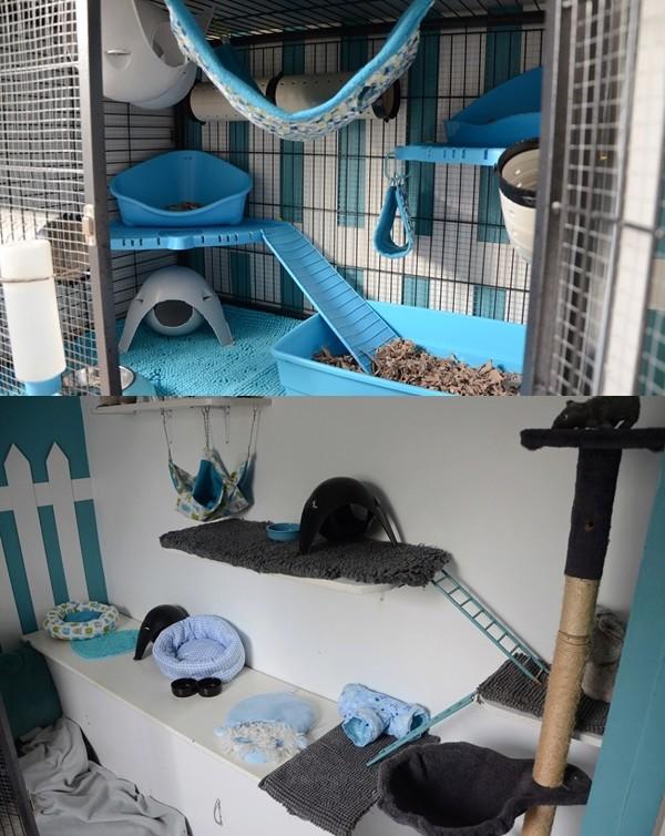 Photos de vos cages - Page 11 Dsc_0110