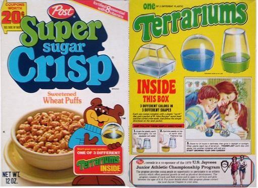 Super Sugar Crisp Terrariums remembered 366_3310
