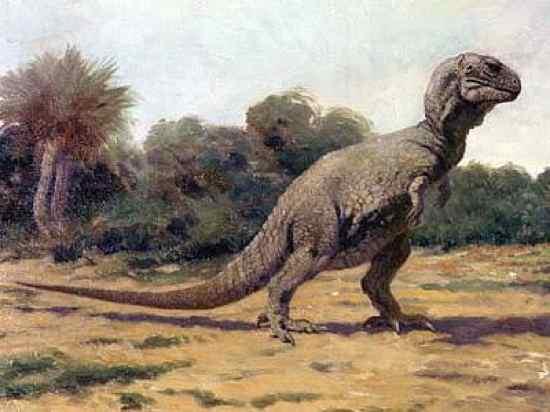i debated dinosaurs as a kid and debates in JonBenet Ramsey Knight12
