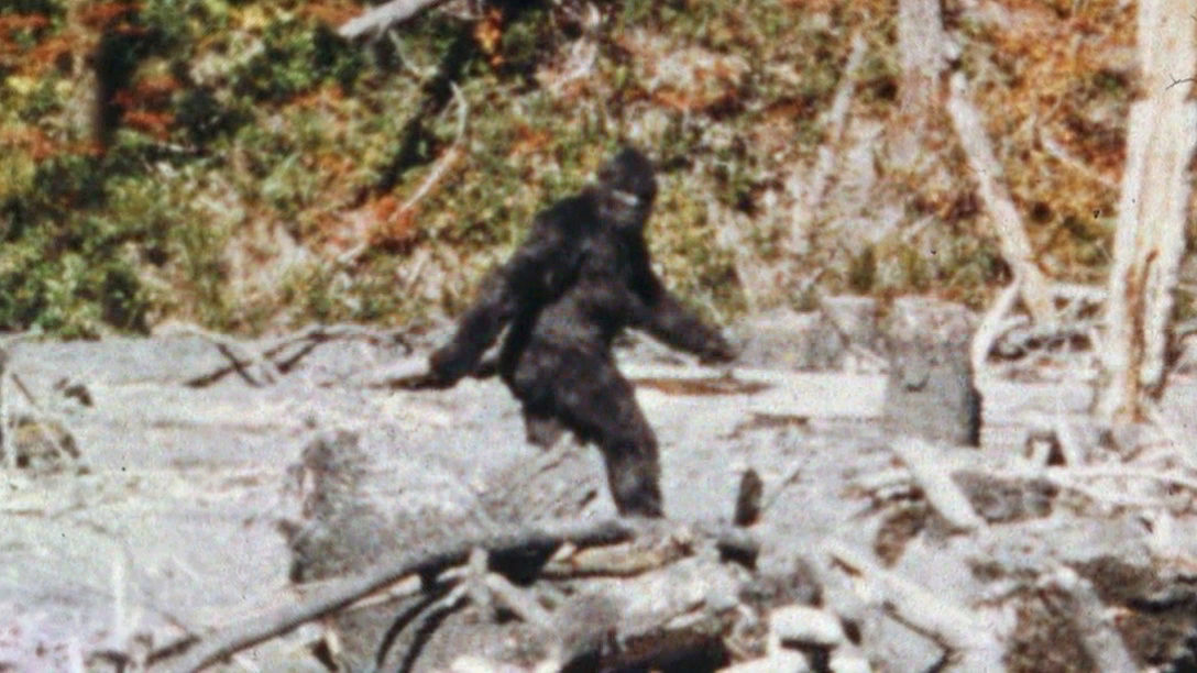 Monster Monday last episode of Finding Bigfoot and wolf-like creature Vlcsn172