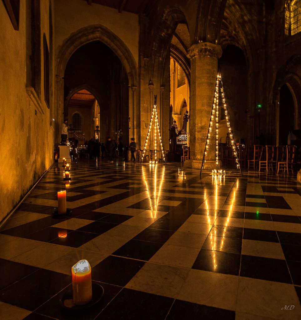 Les Rêves de Notre Dame 0f4a1025