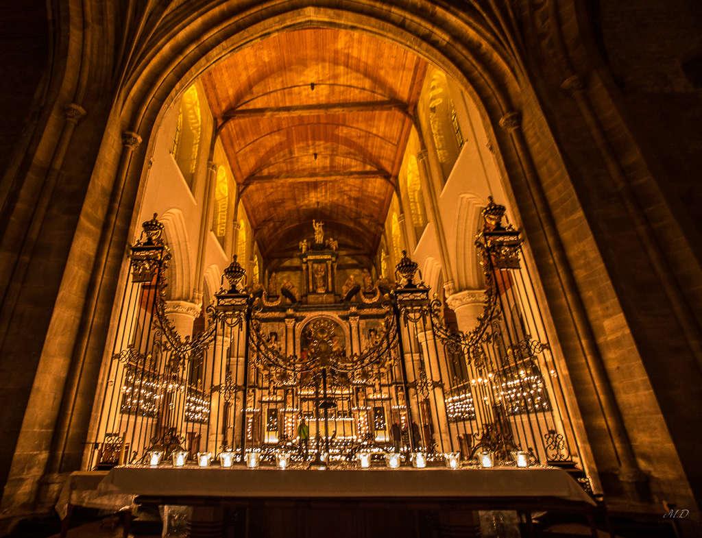 Les Rêves de Notre Dame 0f4a1041