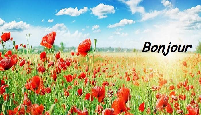 bonjour - Page 3 Sms-po10