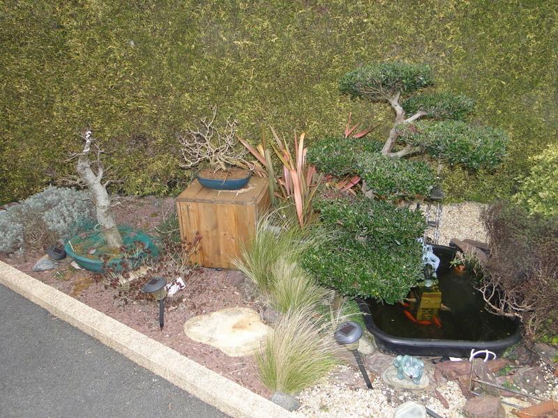 Le bassin hors sol de logan Dsc07210