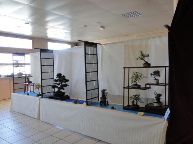 expo club bonsaï émeraude 2018  Dsc09612