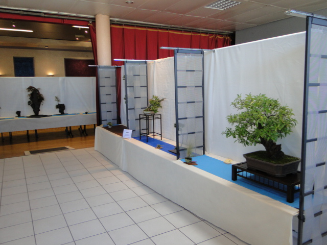 expo club bonsaï émeraude 2018  Dsc09614