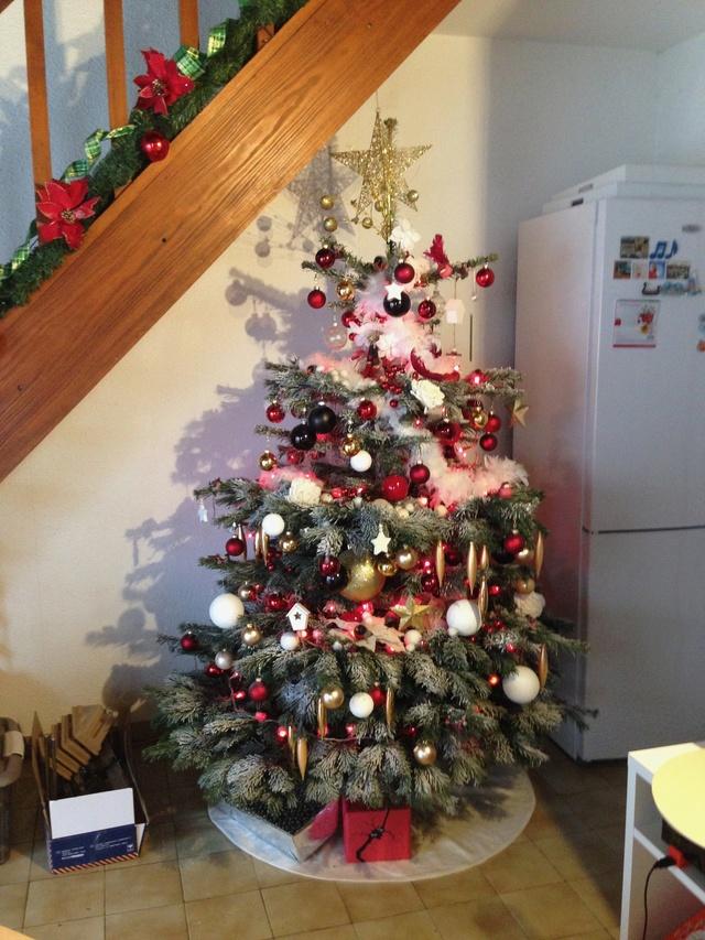 Thème du mois : préparation de fêtes et réalisations pour Noël - Page 4 Img_7529