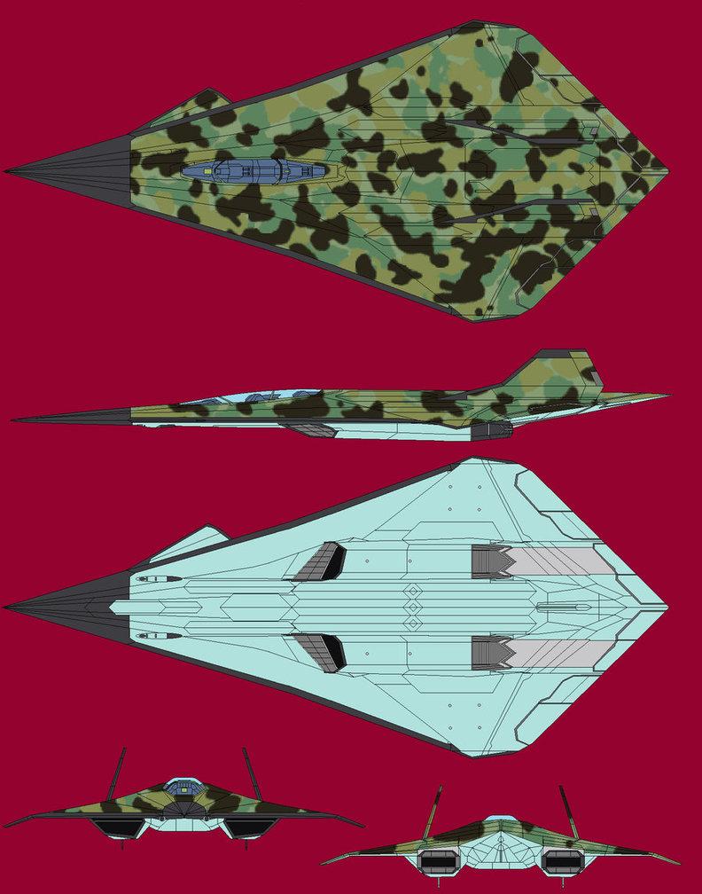 Étude sur le camouflage Bagera10