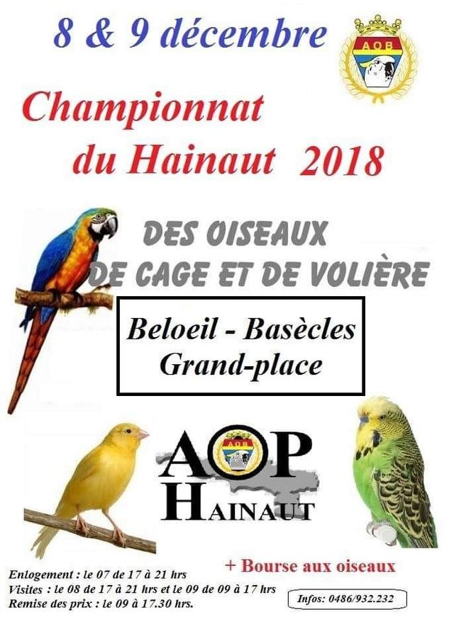 Expo Championnat Provincial Hainaut [9-9 décembre 2018] Hainau10