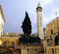 القدس معالم و تاريخ Umar_m10