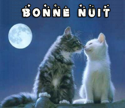 bonzour bonne zournée et bonne nuit notre ti nid za nous - Page 3 Img_6911