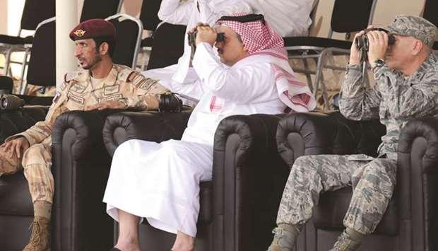 Qatari Splinter 62017110