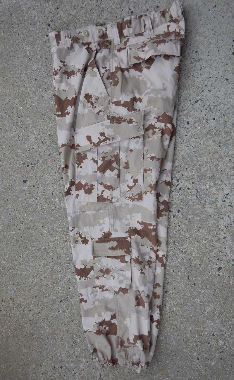 Qatari Splinter Dscn6712